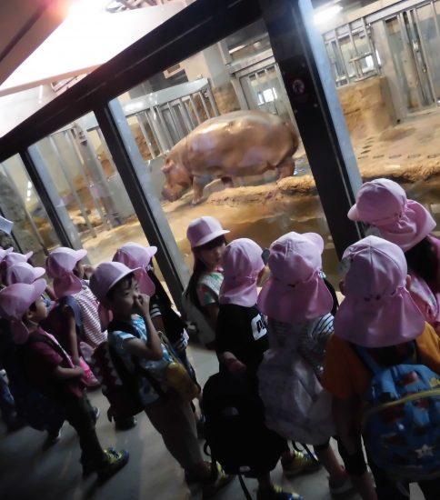 やっといけたよ!楽しみだった円山動物園!